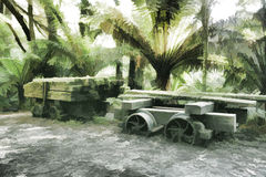 Старая тележка лесопилки Стоковая Фотография RF