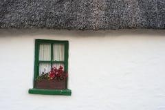 Старая традиционная покрыванная соломой ирландская предпосылка коттеджа Стоковая Фотография RF