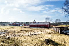 старая фермы норвежская стоковое изображение rf