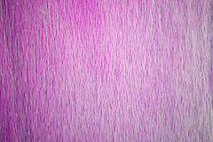 Старая фиолетовая деревянная предпосылка текстуры Стоковое Изображение RF