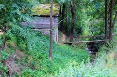 Старая хата в лесе Стоковое Изображение RF