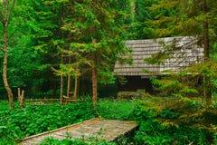 Старая хата в лесе Стоковая Фотография RF