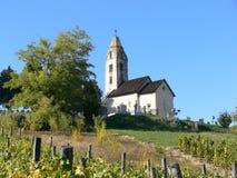 Старая церковь в винограднике в Egregy, HévÃz в Венгрии стоковые изображения