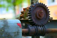 Старая шестерня глиста Стоковое Изображение RF