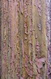 Старая, шелушась краска Стоковое Фото