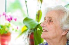 Старая gray-haired женщина стоковое изображение rf
