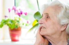 Старая gray-haired женщина стоковые фото
