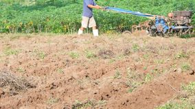 Старик используя небольшой трактор для того чтобы вспахать ферму для того чтобы отрегулировать почву для засаживать сток-видео
