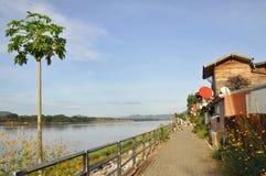 Стародедовская сторона дома река Стоковые Фотографии RF