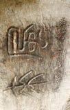 стародедовские китайские иероглифы Стоковая Фотография