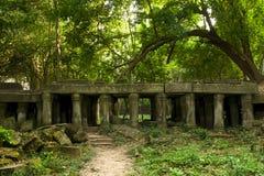 стародедовские руины Камбоджи стоковые фотографии rf