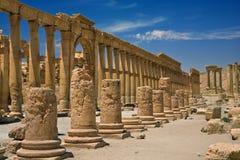 стародедовские руины palmyra Стоковые Изображения