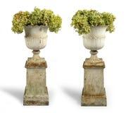 Старое античное литое железо покрасило урны сада на плинтусах изолированных дальше Стоковое фото RF
