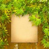 Старое бумажное перечисление на ржавой железной стене с яркой листвой Стоковое Изображение