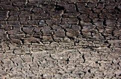 Старое деревянное деревенское шелушение краски предпосылки Стоковые Изображения