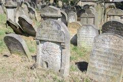 Старое еврейское кладбище в городке Horice очень большое и хорошо сохраненное стоковая фотография rf