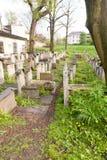 Старое еврейское кладбище Стоковая Фотография