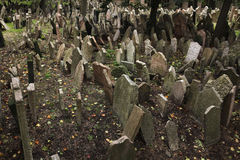 Старое еврейское кладбище в Праге, чехии стоковое изображение