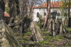 Старое еврейское кладбище в Josefov, Праге, чехии Стоковые Фото