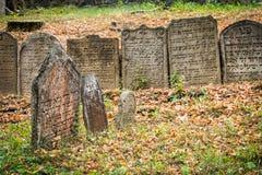 Старое еврейское кладбище в Trebic, чехословакском Стоковое фото RF