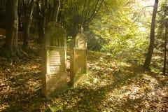 Старое еврейское кладбище Стоковые Фотографии RF