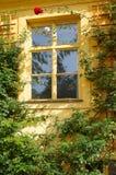Старое европейское окно Стоковые Изображения