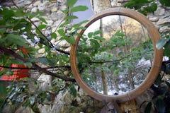 Старое зеркало на дереве Стоковое Изображение