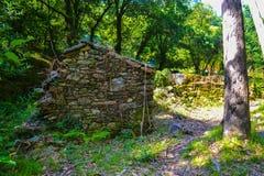 Старое каменное глубокое дома в лесе покинуло каменный дом в Стоковое Фото