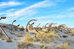 Старое кладбище анкера на пляже Barril Стоковые Изображения RF