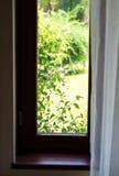 Старое коричневое окно Стоковые Фотографии RF