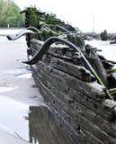 Старое, который село на мель кораблекрушение на пляже Стоковые Фото