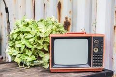 Старое красное телевидение на деревянной таблице Стоковая Фотография RF