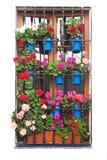 Старое окно с цветками Decirations на белизне стоковые фото