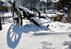 Старое оружие в кладбище героев в Sinaia Стоковое Фото