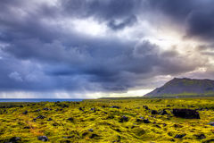 Старое поле лавы Стоковые Фотографии RF