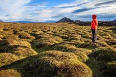 Старое поле лавы Стоковое Изображение