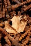 старое ржавое Стоковая Фотография RF