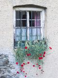 Старое сельское итальянское окно с гвоздиками смертной казни через повешение, caryophyllus гвоздики на Сан Pancrazio, южном Тирол стоковая фотография rf