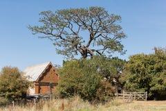 Старое сельскохозяйственное строительство кирпича Стоковые Изображения