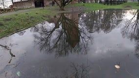 Старое средневековое отражение замка в зеркале озера сток-видео