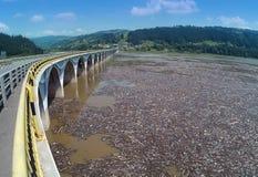 Старое фото загрязнения в воде Стоковые Изображения