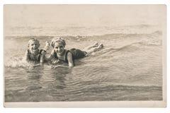 Старое фото ягнится на изображении года сбора винограда моря Стоковые Изображения RF