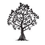 Старое черное дерево также вектор иллюстрации притяжки corel Стоковые Изображения RF