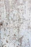 Старое шелушение краски от белой двери Стоковое фото RF