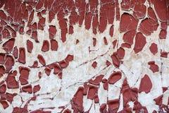 Старое шелушение краски от стены Стоковое фото RF