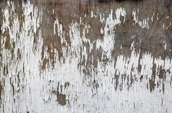 старое шелушение краски Стоковое фото RF