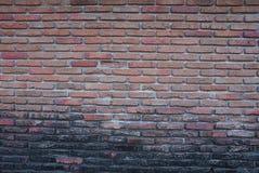 Старое brickwall Стоковые Изображения