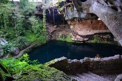 Старое cenote в Юкатане Стоковые Фото
