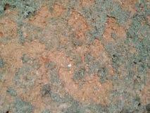 Старое mudwall с много отказов Стоковое фото RF