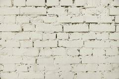 Старой покрашенная белизной предпосылка кирпичной стены стоковое изображение